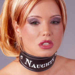 Leather Look Neck Restraint